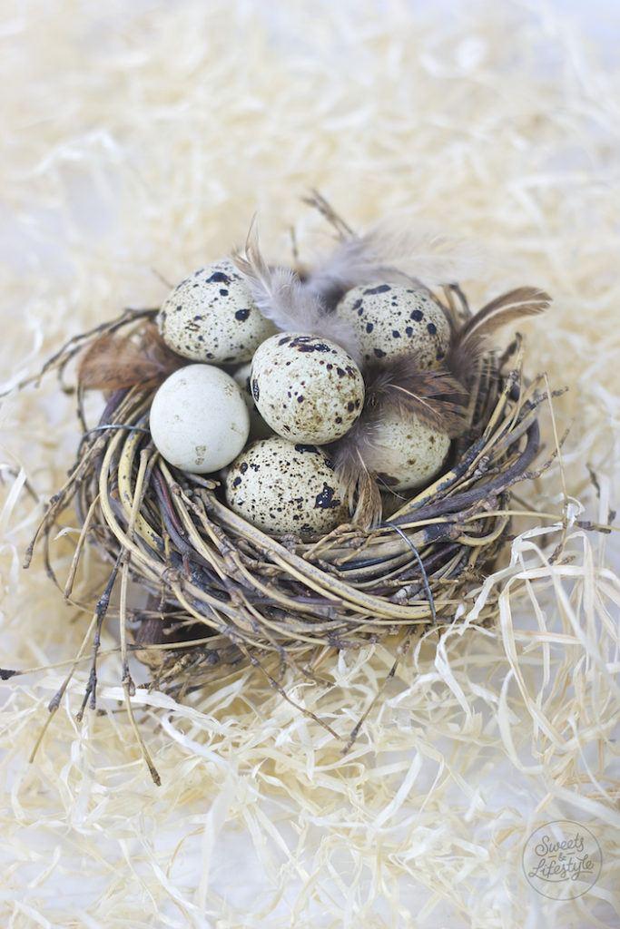 Cremiger selbst gemachter Eierlikoer auch mit Wachteleiern moeglich von Sweets and Lifestyle
