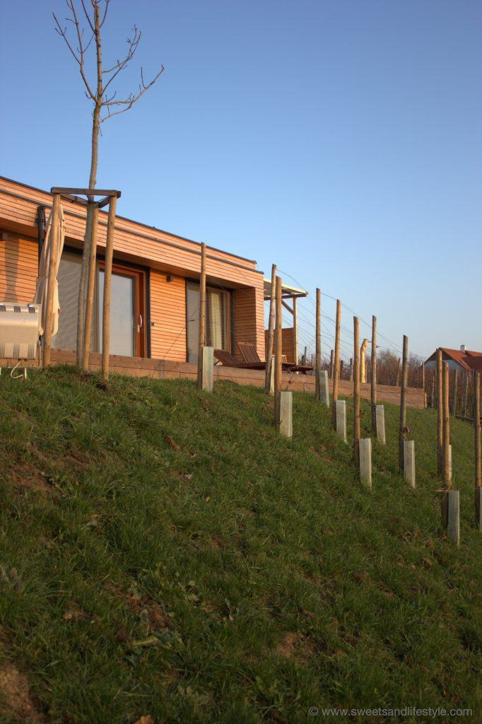 Blick auf das Weinhaus 01 des Weingarten-Resorts Unterlamm-Loipersdorf von Sweets and Lifestyle