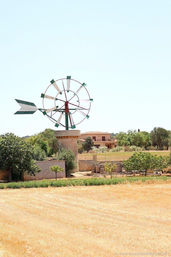 altes Windrad im Süden von Mallorca