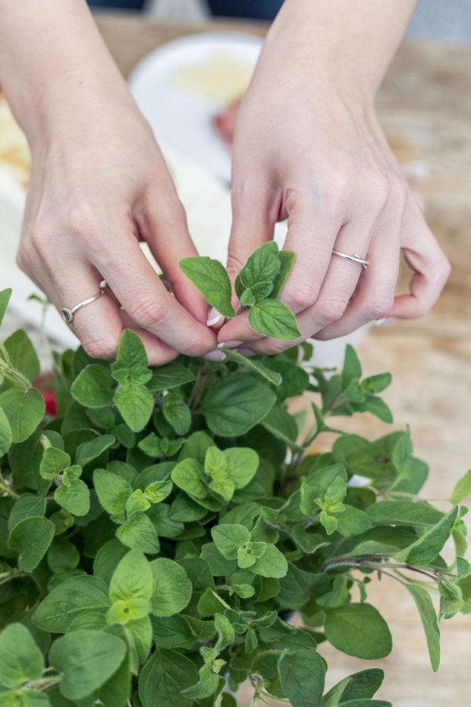 Frische Kräuter als aromatische Garnierung der pikanten Brottorte von Sweets & Lifestyle®