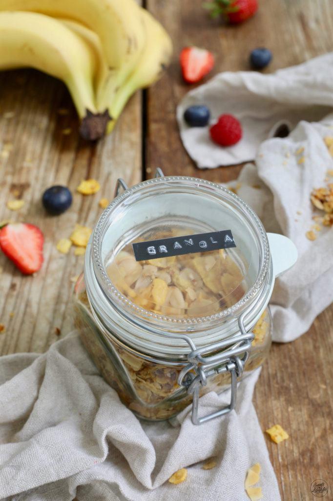 Zuckerfreies Granola selber machen mit Kokosöl ohne Zucker nach dem Rezept von Sweets & Lifestyle®