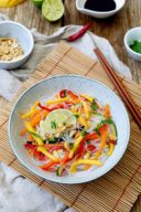 Asiatischer Salat mit Mango nach einem Rezept von Sweets & Lifestyle®