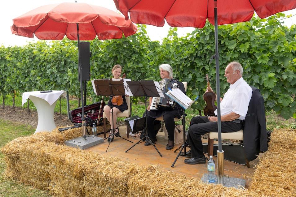 Musikalische Umrahmung beim Tafeln im Weinviertel