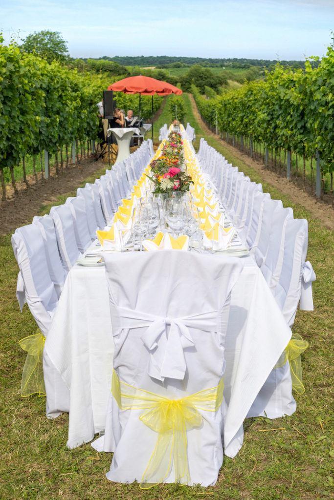 Tafeln im Weinviertel zwischen den Reben in Stetten