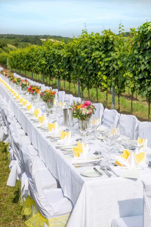 Verena von Sweets & Lifestyle® zu Gast beim Tafeln zwischen den Reben im Weinviertel