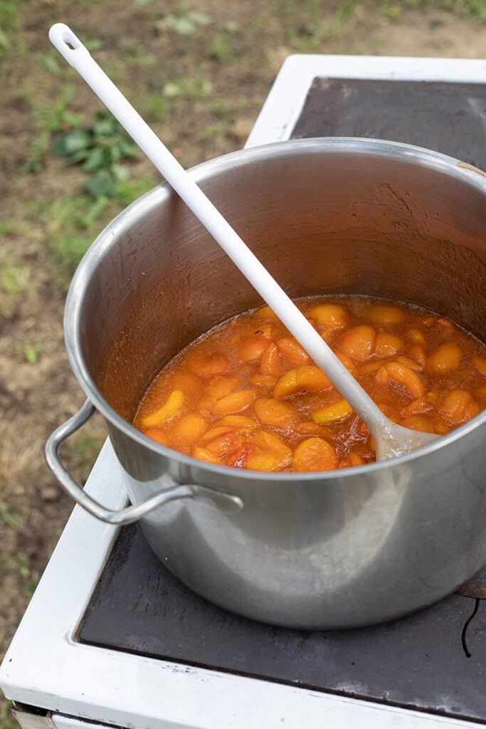 Marillentraum fuer einen Kindertraum Marmelade wird am Holzofen im Marillengarten gekocht