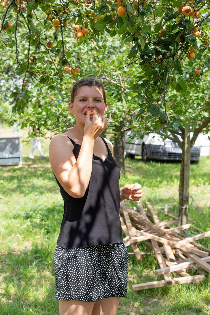 Viktoria Preiss beim Verkosten ihrer Marillen welche fuer die Marillentraum fuer einen Kindertraum Marmelade verwendet werden