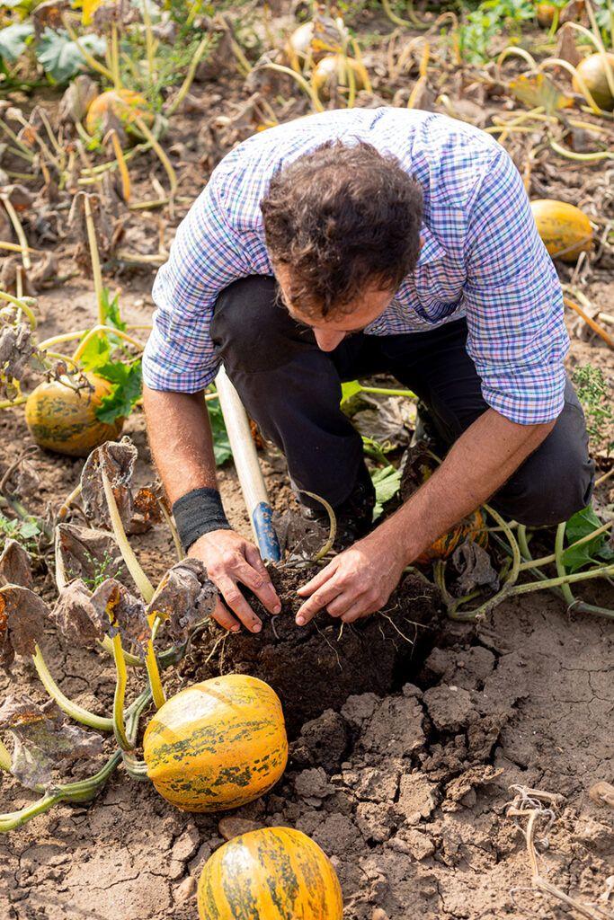Bio-Landwirt Georg Prantl beim Kontrollieren seines Biofeldes in Neudorf fotografiert von Fotografin Verena Pelikan