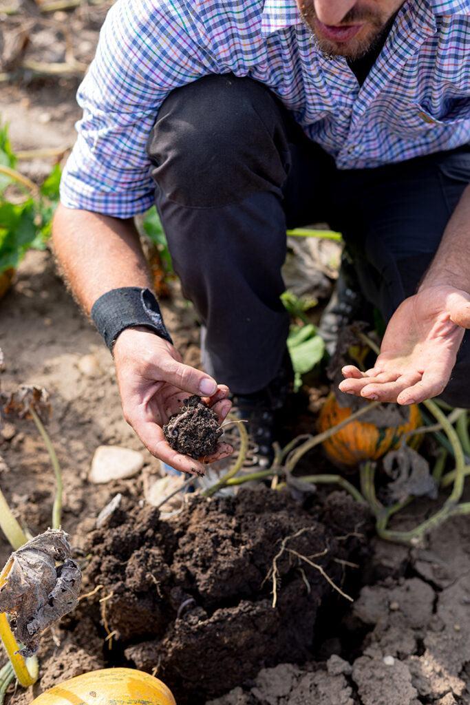 Bio-Landwirt Georg Prantl mit gesunder Erde mit Regenwurm auf seinem Bio-Oelkuerbisfeld